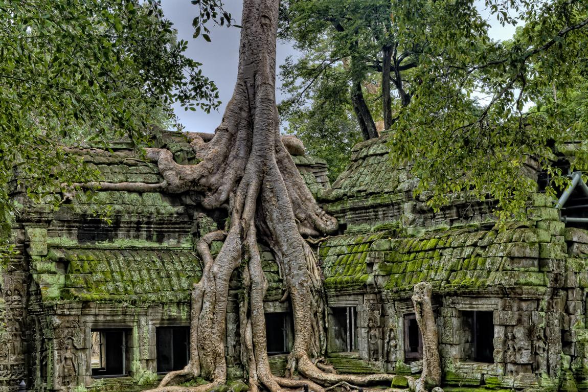 Die Tempelanlage von Angkor Wat aus der Nähe.
