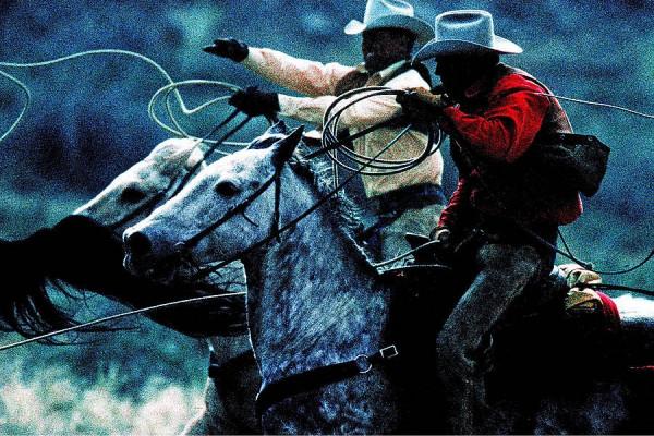 Cowboys mit Lasso auf Pferden