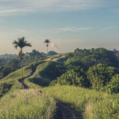 Impression aus Bali, wo Dr. Breyer beim Kongress der Asia-Pazifischen-Refraktivchirurgen das Düsseldorfer Schema präsentierte.